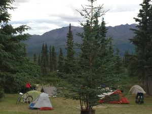 The perfect base to explore the Denali Highway